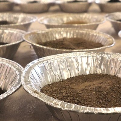 Soil particle size analysis