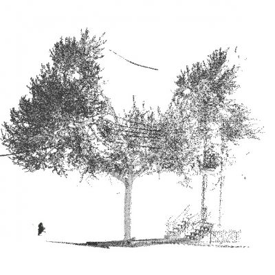Terrestrial LiDAR : Used to measure the structural characteristics of trees and forest stands