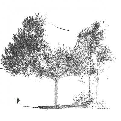 LiDAR terrestre : Permet de mesurer les caractéristiques structurales des arbres et des peuplements forestiers
