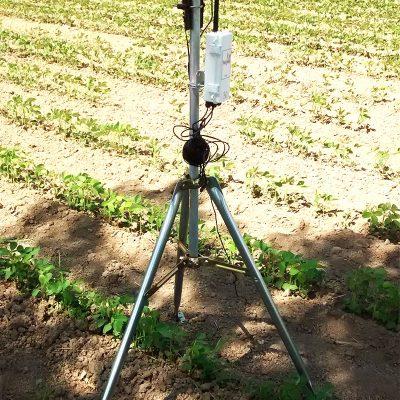 Station Météo professionnelle avec capteur de la température, de la direction et vitesse du vent, humidité relative de l'air, pluviosité ainsi que la radiation photosynthétiqu